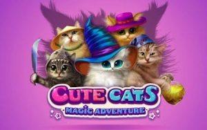 Trucchi Adorabili Gattini gratuiti